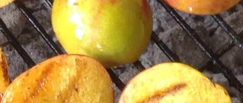 Arrington nectarines on the grill